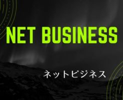 6 246x200 - 【初心者編(~月10万)】ネットビジネスの落とし穴とは何か?その末路…